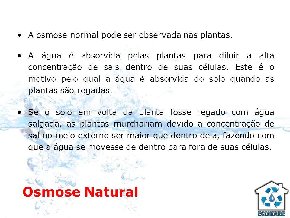 Osmose Natural A osmose normal pode ser observada nas plantas. A água é absorvida pelas plantas para diluir a alta concentração de sais dentro de suas