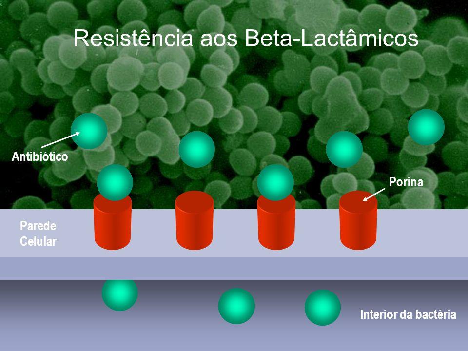 Estafilococcias comunitárias Interior da bactéria Parede Celular Porina Antibiótico Resistência aos Beta-Lactâmicos