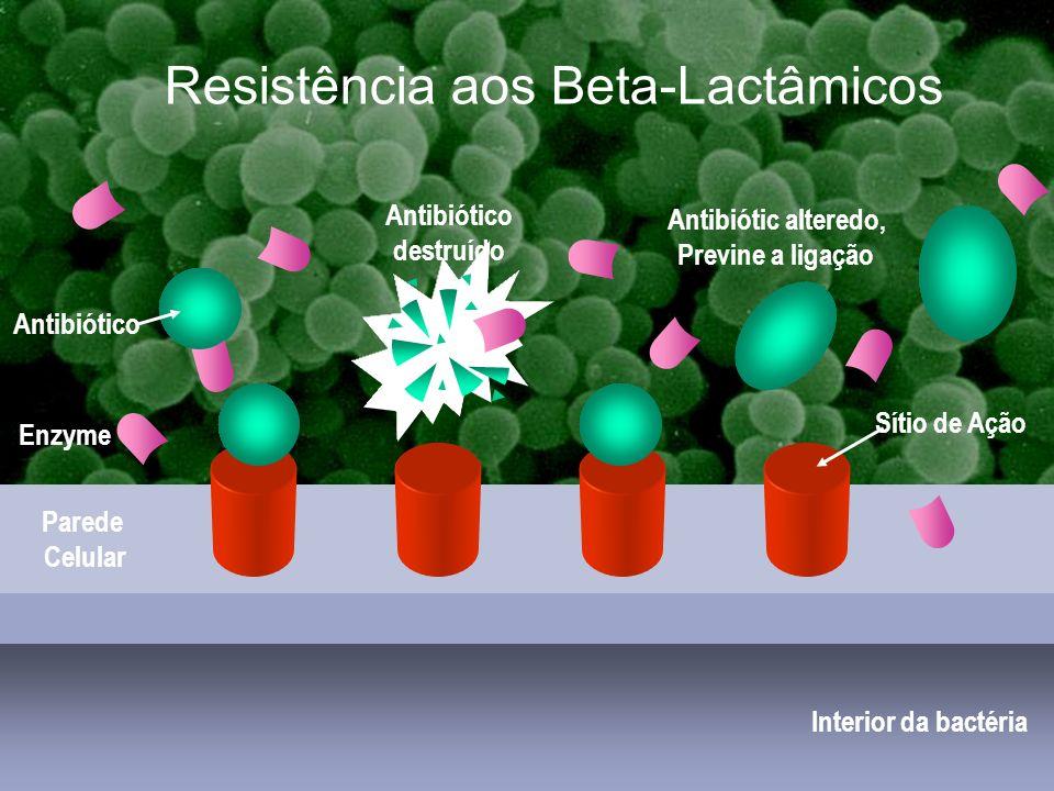 Estafilococcias comunitárias Interior da bactéria Parede Celular Antibiótico Sítio de Ação Enzyme Antibiótico destruído Antibiótic alteredo, Previne a