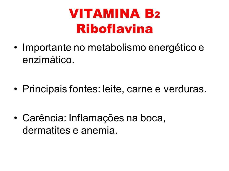 VITAMINA B 2 Riboflavina Importante no metabolismo energético e enzimático. Principais fontes: leite, carne e verduras. Carência: Inflamações na boca,
