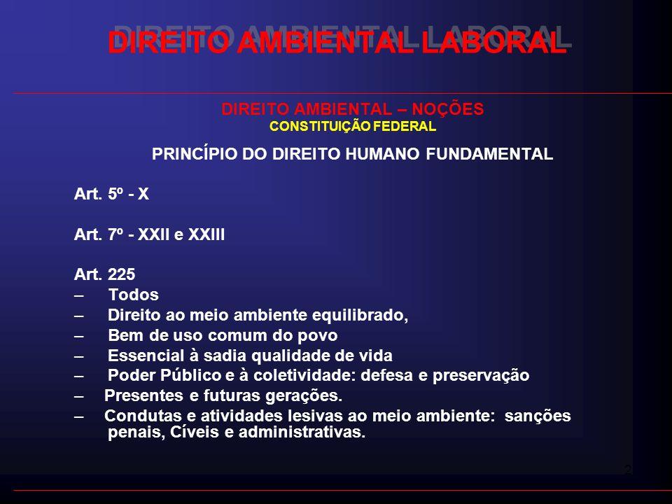 2 DIREITO AMBIENTAL LABORAL DIREITO AMBIENTAL – NOÇÕES CONSTITUIÇÃO FEDERAL PRINCÍPIO DO DIREITO HUMANO FUNDAMENTAL Art. 5º - X Art. 7º - XXII e XXIII