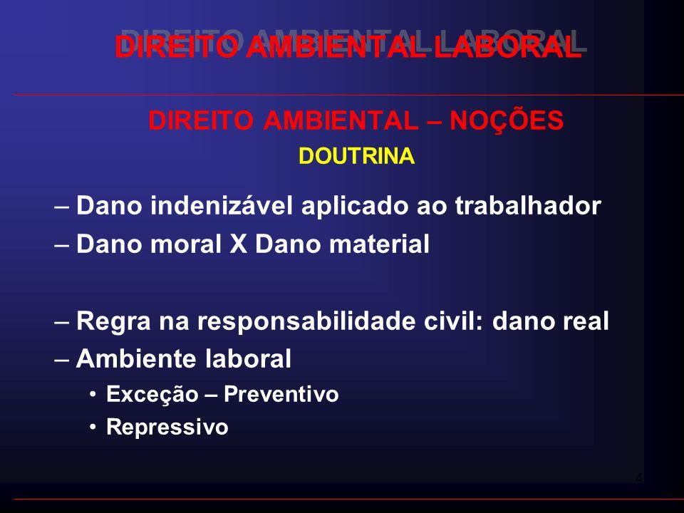 4 DIREITO AMBIENTAL LABORAL DIREITO AMBIENTAL – NOÇÕES DOUTRINA –Dano indenizável aplicado ao trabalhador –Dano moral X Dano material –Regra na respon