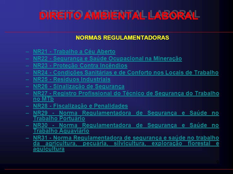 30 DIREITO AMBIENTAL LABORAL LEGISLAÇÃO PREVIDENCIÁRIA - LEI Nº 8.213, DE 24 DE JULHO DE 1991 - Perda de incentivos fiscais - Multas - Interdição da empresa -Proibição de licitar DANO MORAL E MATERIAL DA EMPRESA