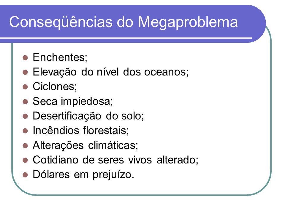 Conseqüências do Megaproblema Enchentes; Elevação do nível dos oceanos; Ciclones; Seca impiedosa; Desertificação do solo; Incêndios florestais; Altera