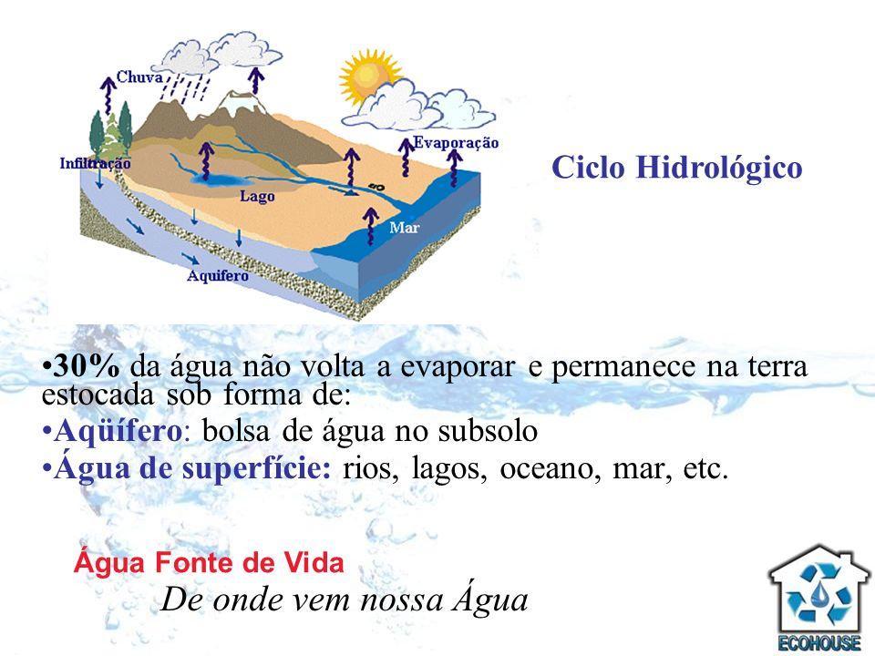 30% da água não volta a evaporar e permanece na terra estocada sob forma de: Aqüífero: bolsa de água no subsolo Água de superfície: rios, lagos, ocean