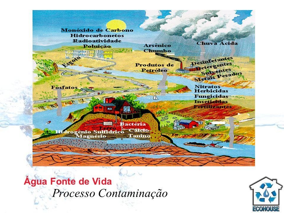 Água Fonte de Vida Processo Contaminação