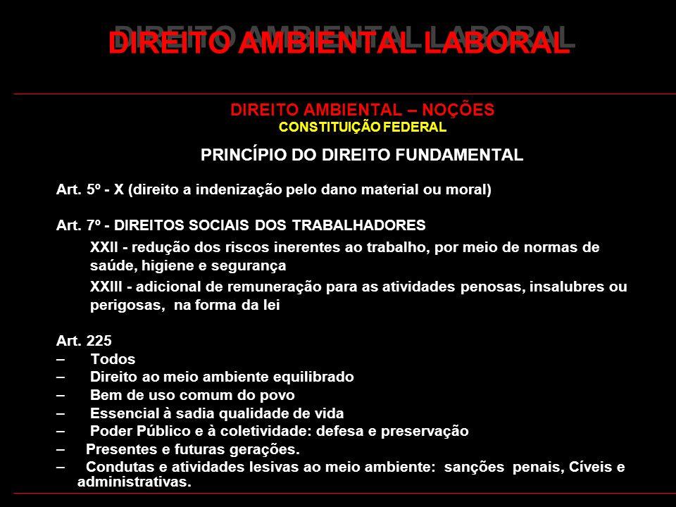 2 DIREITO AMBIENTAL LABORAL DIREITO AMBIENTAL – NOÇÕES CONSTITUIÇÃO FEDERAL PRINCÍPIO DO DIREITO FUNDAMENTAL Art. 5º - X (direito a indenização pelo d
