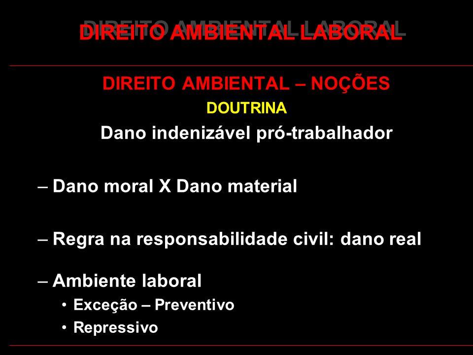 4 DIREITO AMBIENTAL LABORAL DIREITO AMBIENTAL – NOÇÕES DOUTRINA Dano indenizável pró-trabalhador –Dano moral X Dano material –Regra na responsabilidad
