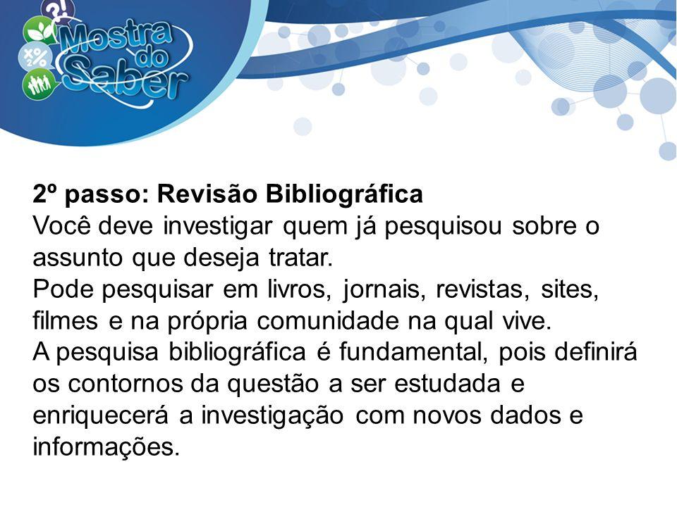 2º passo: Revisão Bibliográfica Você deve investigar quem já pesquisou sobre o assunto que deseja tratar. Pode pesquisar em livros, jornais, revistas,