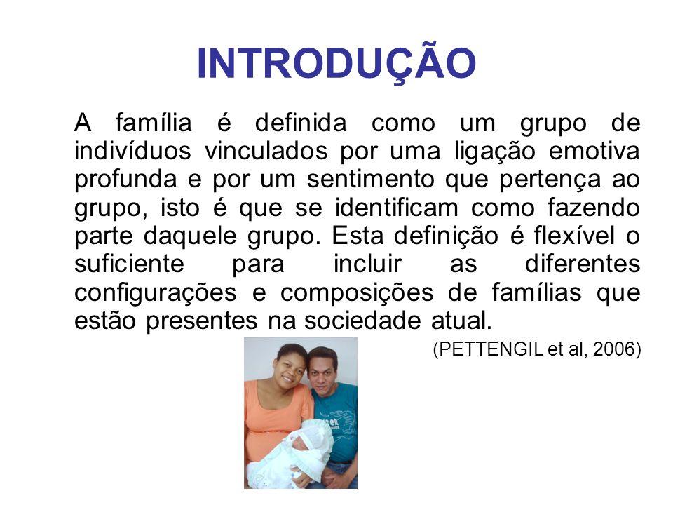 INTRODUÇÃO A família é definida como um grupo de indivíduos vinculados por uma ligação emotiva profunda e por um sentimento que pertença ao grupo, ist