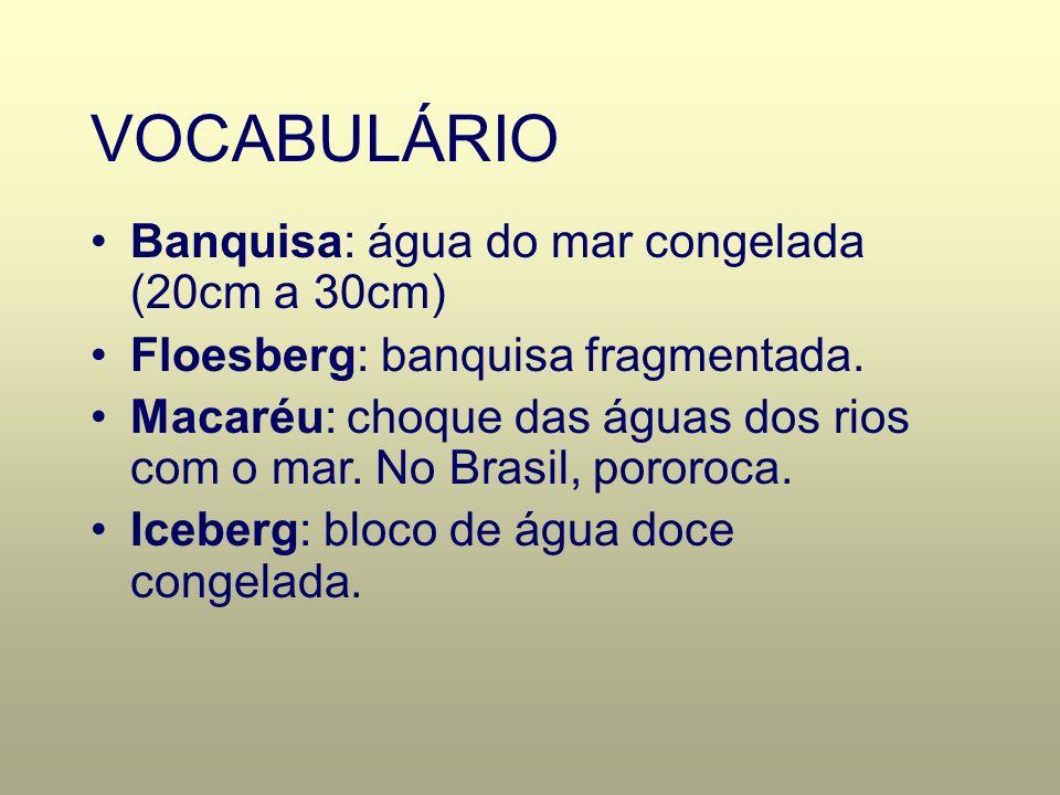 VOCABULÁRIO Banquisa: água do mar congelada (20cm a 30cm) Floesberg: banquisa fragmentada. Macaréu: choque das águas dos rios com o mar. No Brasil, po