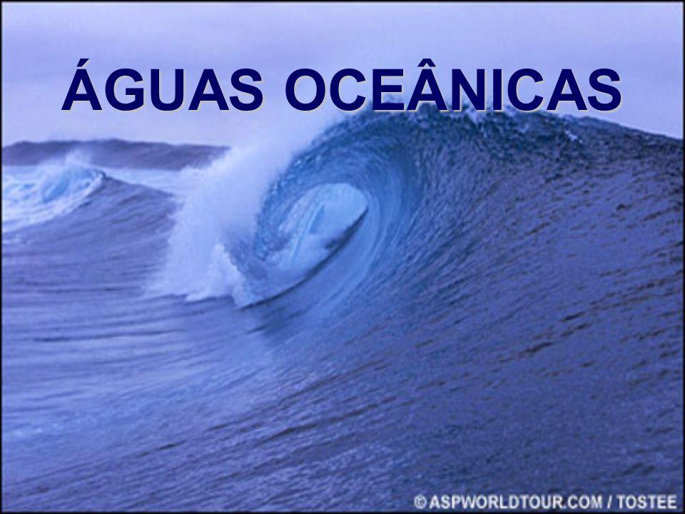 OCEANOS: Grandes massas de água salgada.