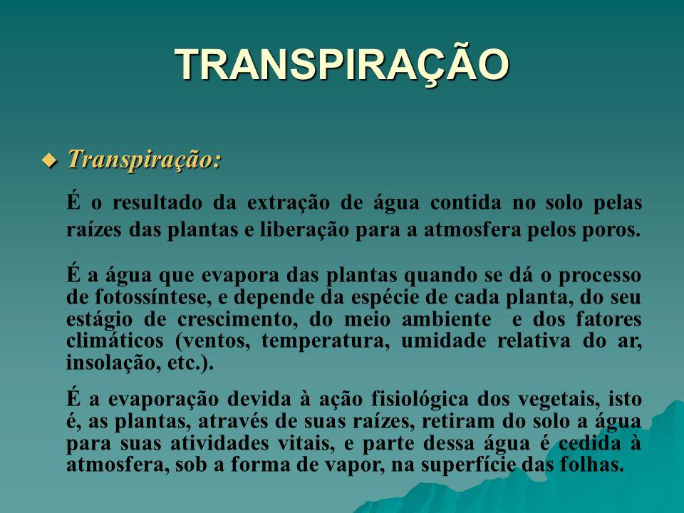 TRANSPIRAÇÃO Transpiração: Transpiração: É o resultado da extração de água contida no solo pelas raízes das plantas e liberação para a atmosfera pelos