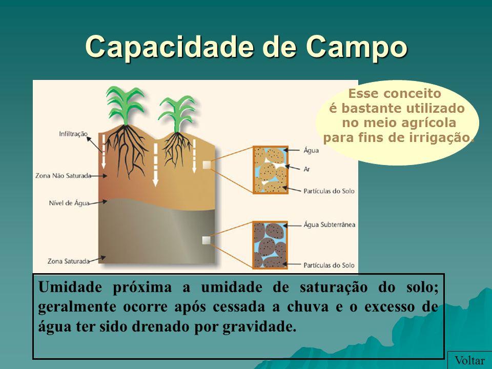 Capacidade de Campo Voltar Umidade próxima a umidade de saturação do solo; geralmente ocorre após cessada a chuva e o excesso de água ter sido drenado