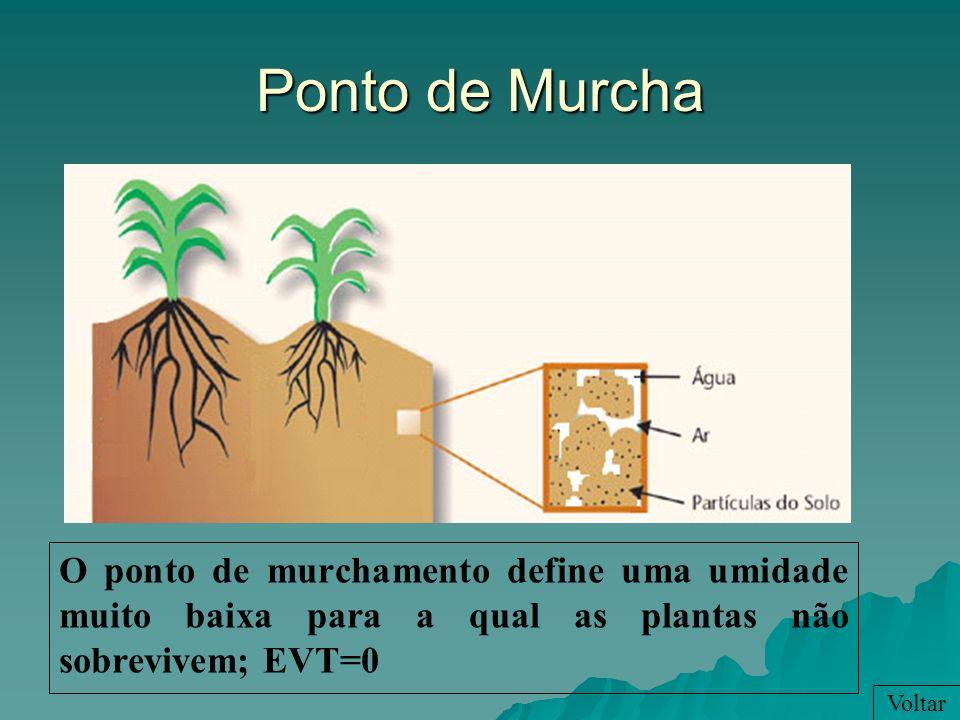Ponto de Murcha O ponto de murchamento define uma umidade muito baixa para a qual as plantas não sobrevivem; EVT=0 Voltar