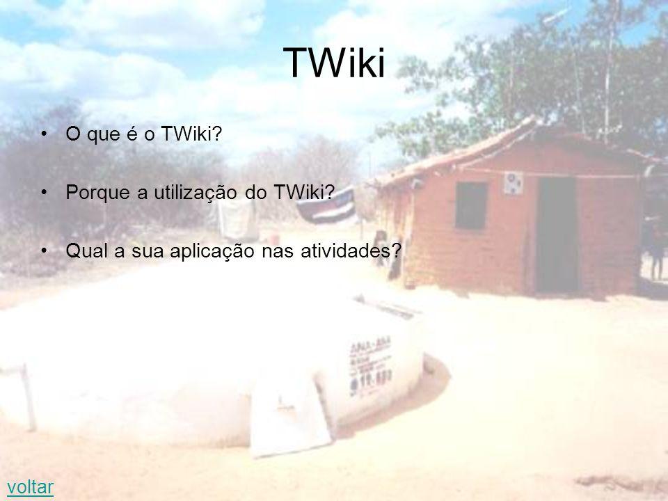 TWiki O que é o TWiki? Porque a utilização do TWiki? Qual a sua aplicação nas atividades? voltar