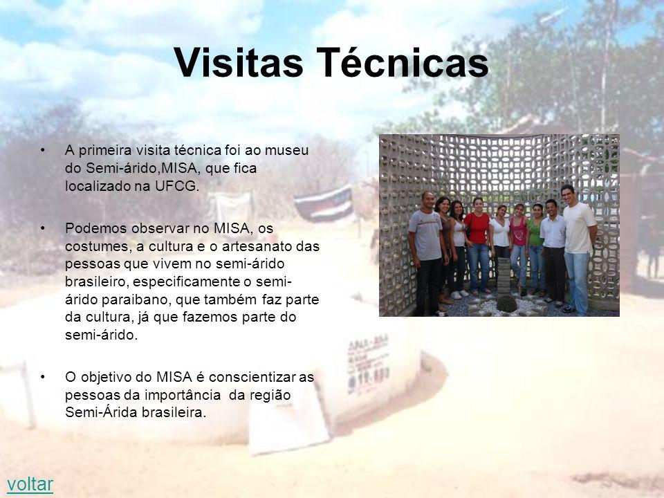 Visitas Técnicas A primeira visita técnica foi ao museu do Semi-árido,MISA, que fica localizado na UFCG.