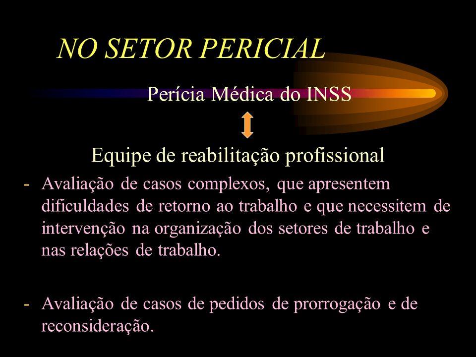 Reabilitação Profissional deve ser objeto de política de Estado. Esfera familiar Esfera social próxima Meio ambiente Ambiente de trabalho Esfera indiv