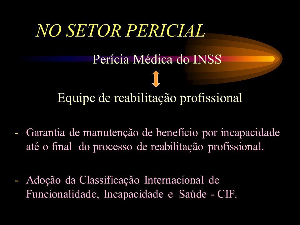 NO SETOR PERICIAL Perícia Médica do INSS Equipe de reabilitação profissional -Avaliação de casos complexos, que apresentem dificuldades de retorno ao