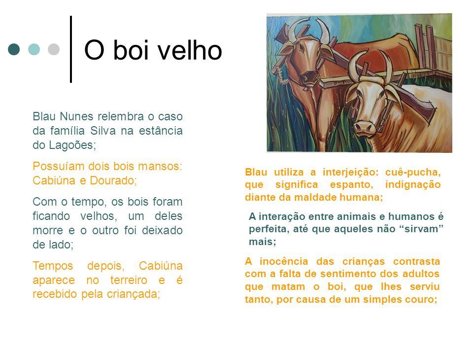 O boi velho Blau Nunes relembra o caso da família Silva na estância do Lagoões; Possuíam dois bois mansos: Cabiúna e Dourado; Com o tempo, os bois for