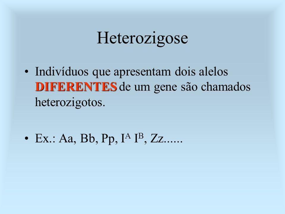 Heterozigose DIFERENTESIndivíduos que apresentam dois alelos DIFERENTES de um gene são chamados heterozigotos. Ex.: Aa, Bb, Pp, I A I B, Zz......