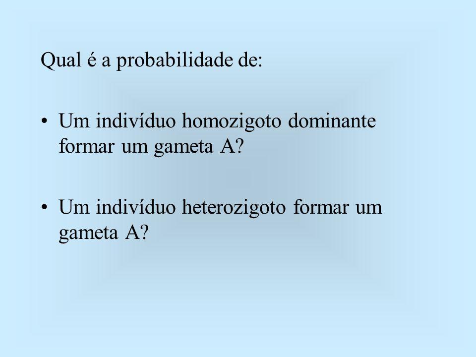 Qual é a probabilidade de: Um indivíduo homozigoto dominante formar um gameta A? Um indivíduo heterozigoto formar um gameta A?