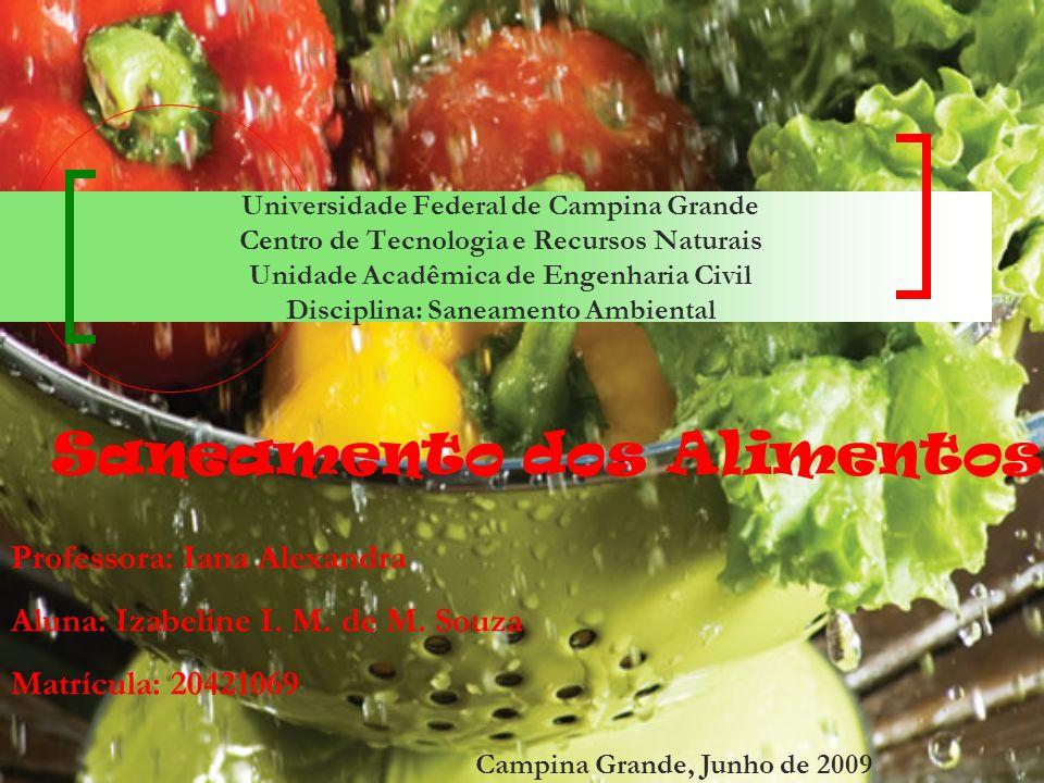 3.0 Saneamento dos Alimentos Microrganismos Bactérias Bolores Protozoários Vírus