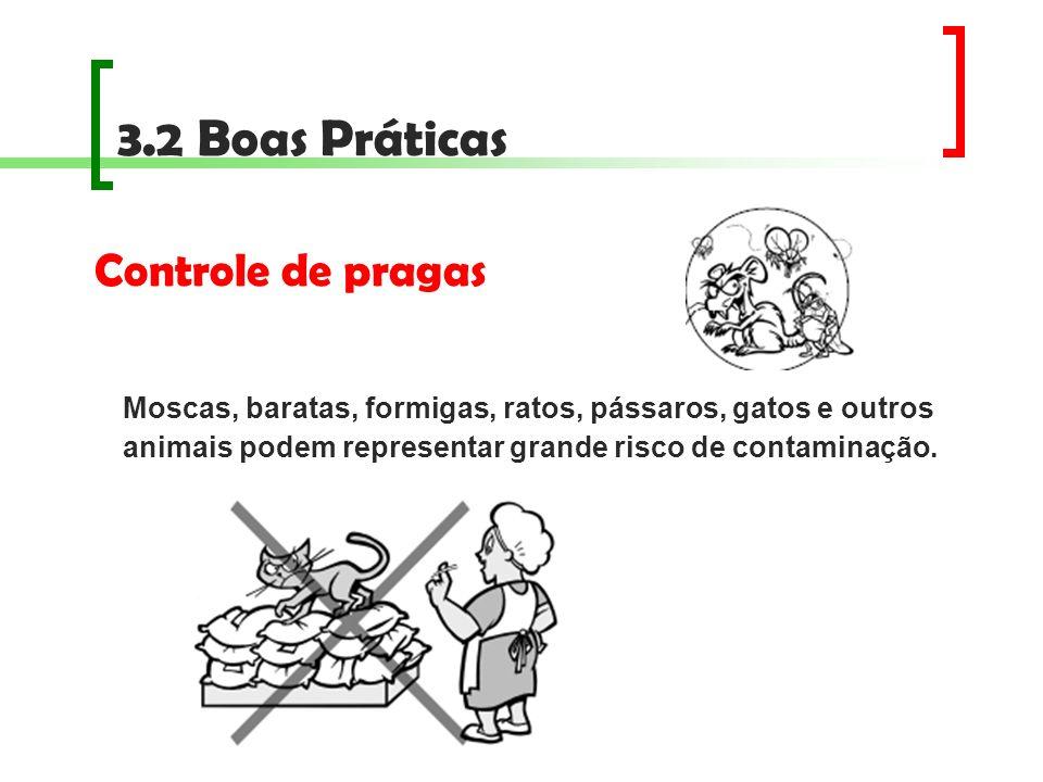3.2 Boas Práticas Controle de pragas Moscas, baratas, formigas, ratos, pássaros, gatos e outros animais podem representar grande risco de contaminação