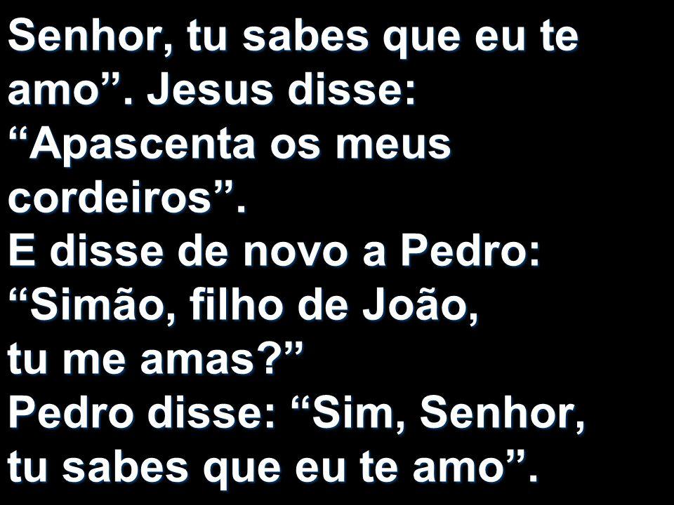 Senhor, tu sabes que eu te amo. Jesus disse: Apascenta os meus cordeiros. E disse de novo a Pedro: Simão, filho de João, tu me amas? Pedro disse: Sim,