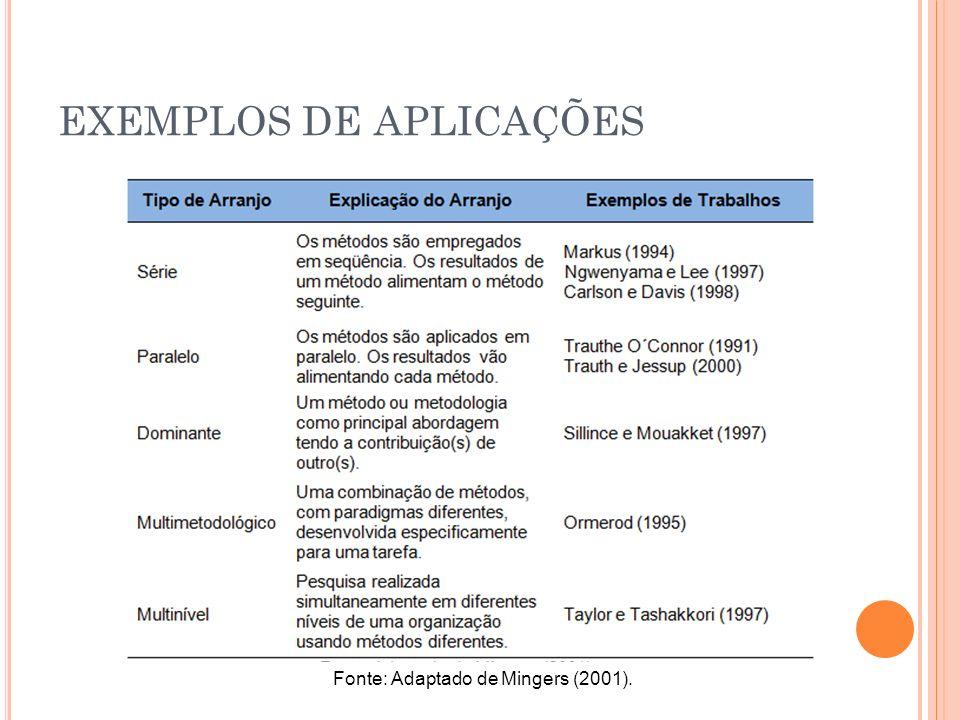 EXEMPLOS DE APLICAÇÕES Fonte: Adaptado de Mingers (2001).