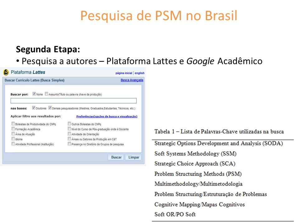 Pesquisa de PSM no Brasil Segunda Etapa: Pesquisa a autores – Plataforma Lattes e Google Acadêmico