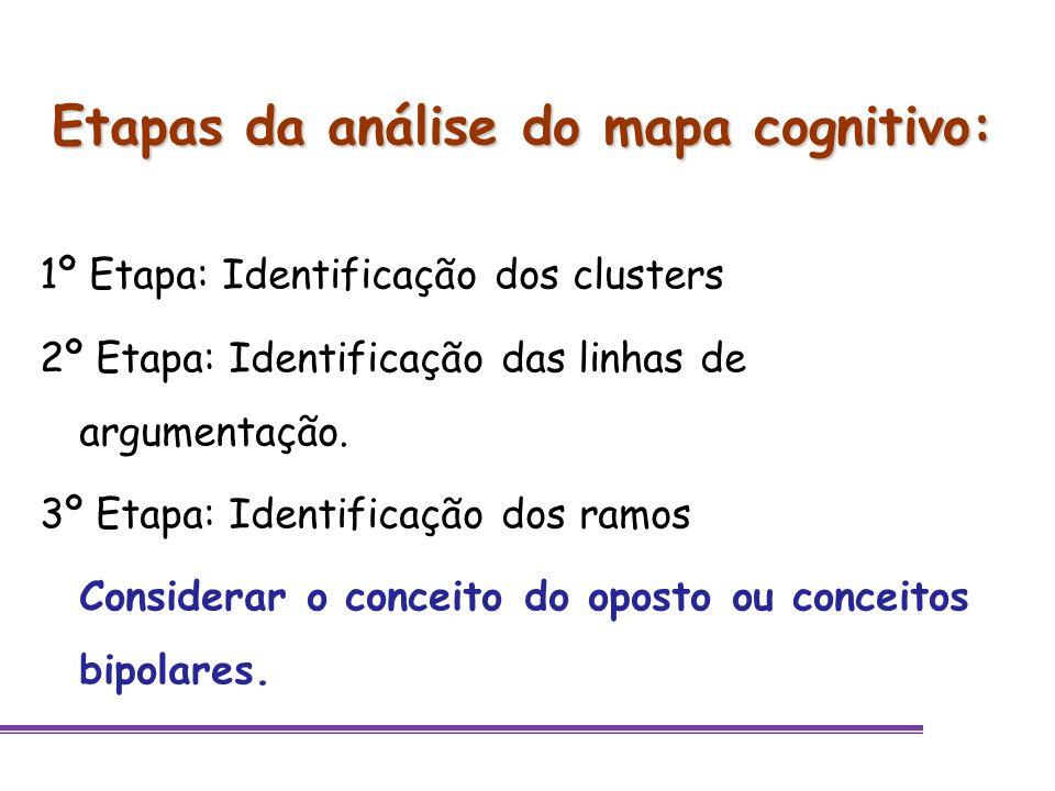 Etapas da análise do mapa cognitivo: 1º Etapa: Identificação dos clusters 2º Etapa: Identificação das linhas de argumentação. 3º Etapa: Identificação