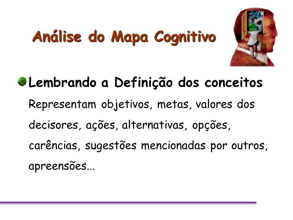 Análise do Mapa Cognitivo Lembrando a Definição dos conceitos Representam objetivos, metas, valores dos decisores, ações, alternativas, opções, carênc