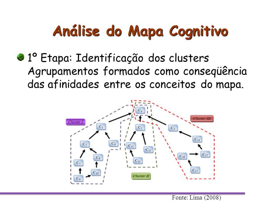 Análise do Mapa Cognitivo 1º Etapa: Identificação dos clusters Agrupamentos formados como conseqüência das afinidades entre os conceitos do mapa. Font