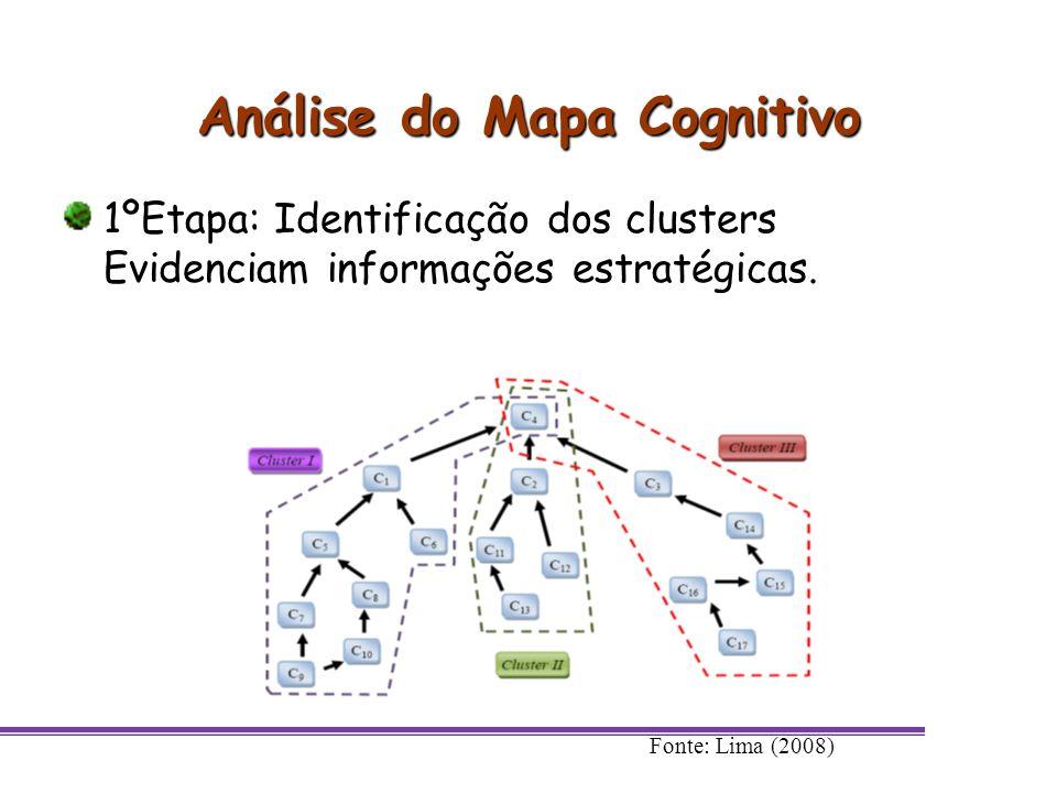 Análise do Mapa Cognitivo 1ºEtapa: Identificação dos clusters Evidenciam informações estratégicas. Fonte: Lima (2008)