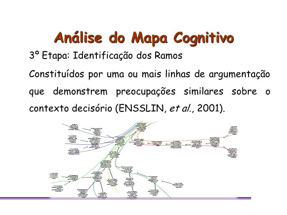 Análise do Mapa Cognitivo 3º Etapa: Identificação dos Ramos Constituídos por uma ou mais linhas de argumentação que demonstrem preocupações similares
