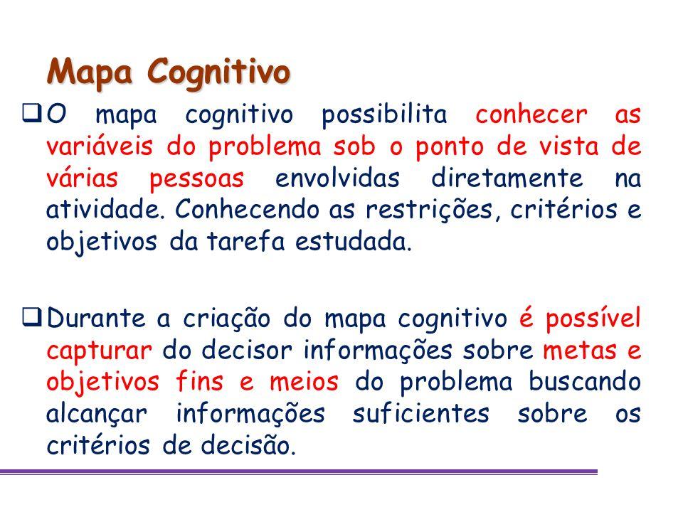 Mapa Cognitivo O mapa cognitivo possibilita conhecer as variáveis do problema sob o ponto de vista de várias pessoas envolvidas diretamente na ativida