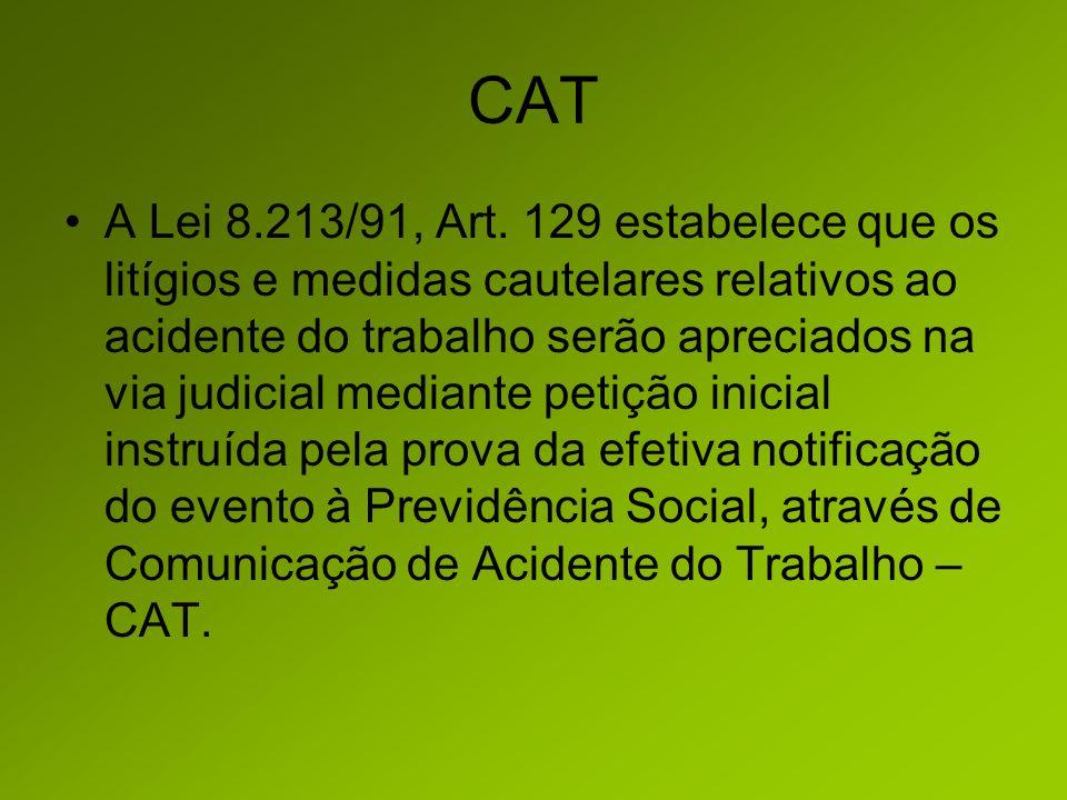 CAT A Lei 8.213/91, Art.