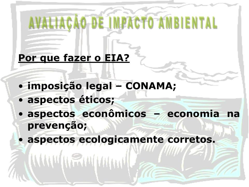 Por que fazer o EIA? imposição legal – CONAMA; aspectos éticos; aspectos econômicos – economia na prevenção; aspectos ecologicamente corretos.