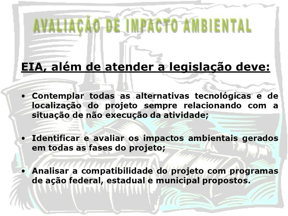 EIA, além de atender a legislação deve: Contemplar todas as alternativas tecnológicas e de localização do projeto sempre relacionando com a situação d