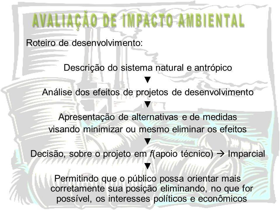 Roteiro de desenvolvimento: Descrição do sistema natural e antrópico Análise dos efeitos de projetos de desenvolvimento Apresentação de alternativas e