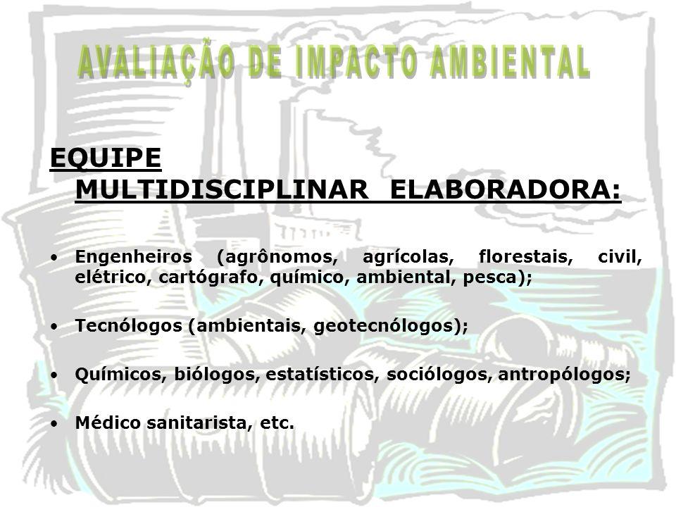 EQUIPE MULTIDISCIPLINAR ELABORADORA: Engenheiros (agrônomos, agrícolas, florestais, civil, elétrico, cartógrafo, químico, ambiental, pesca); Tecnólogo