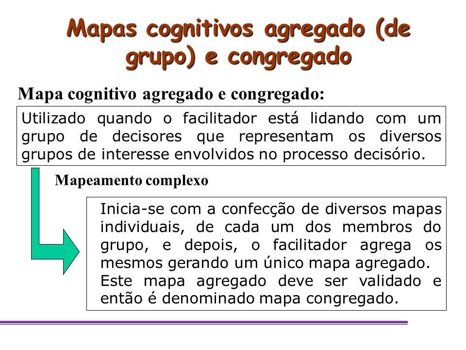 Utilizado quando o facilitador está lidando com um grupo de decisores que representam os diversos grupos de interesse envolvidos no processo decisório
