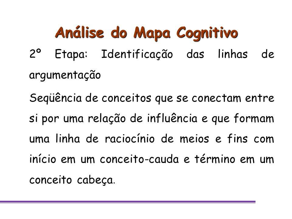 Análise do Mapa Cognitivo 2º Etapa: Identificação das linhas de argumentação Seqüência de conceitos que se conectam entre si por uma relação de influê