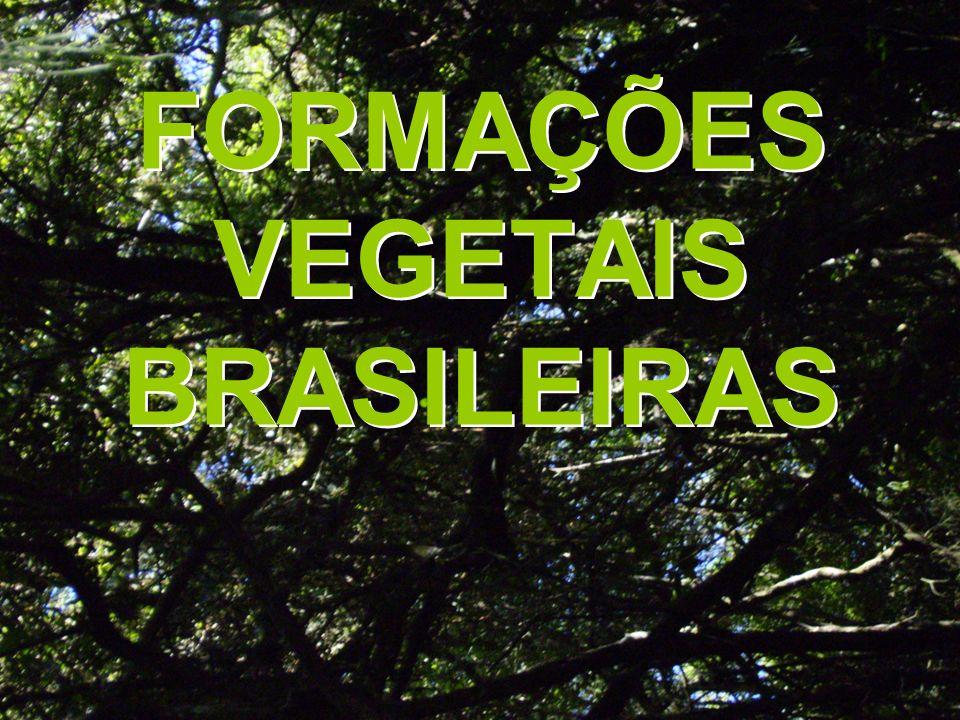 FORMAÇÕES VEGETAIS BRASILEIRAS