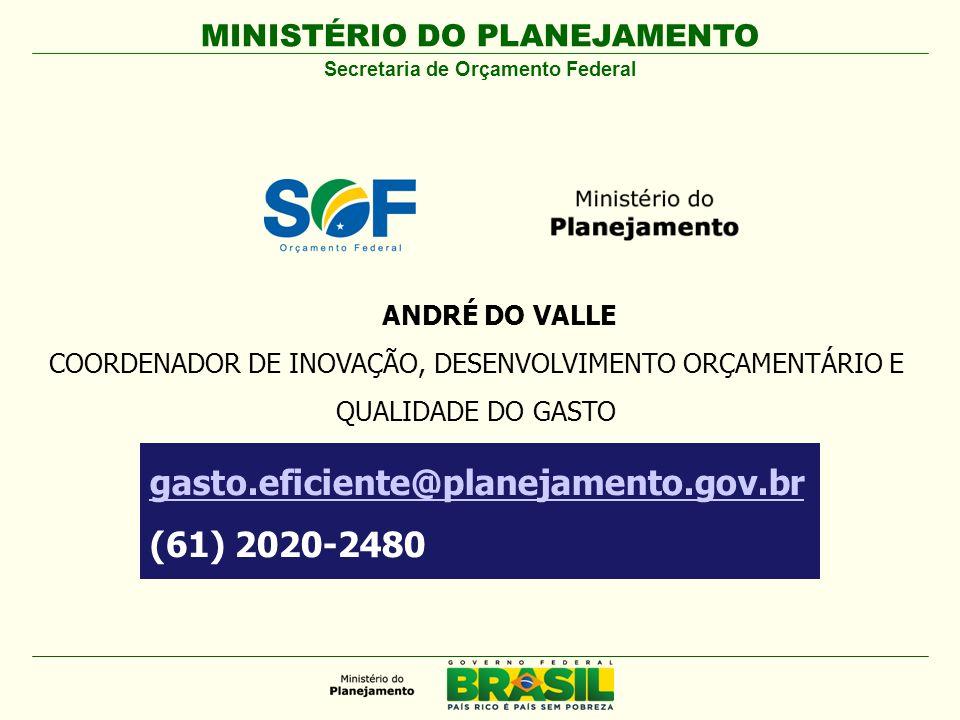 MINISTÉRIO DO PLANEJAMENTO Secretaria de Orçamento Federal gasto.eficiente@planejamento.gov.br (61) 2020-2480 ANDRÉ DO VALLE COORDENADOR DE INOVAÇÃO,