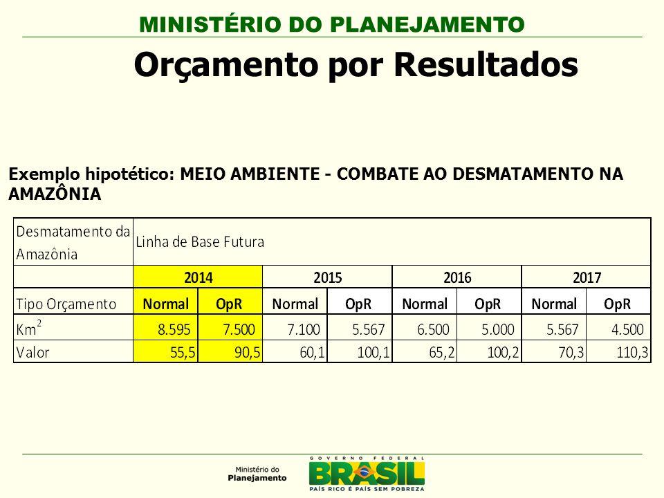 MINISTÉRIO DO PLANEJAMENTO Orçamento por Resultados Exemplo hipotético: MEIO AMBIENTE - COMBATE AO DESMATAMENTO NA AMAZÔNIA