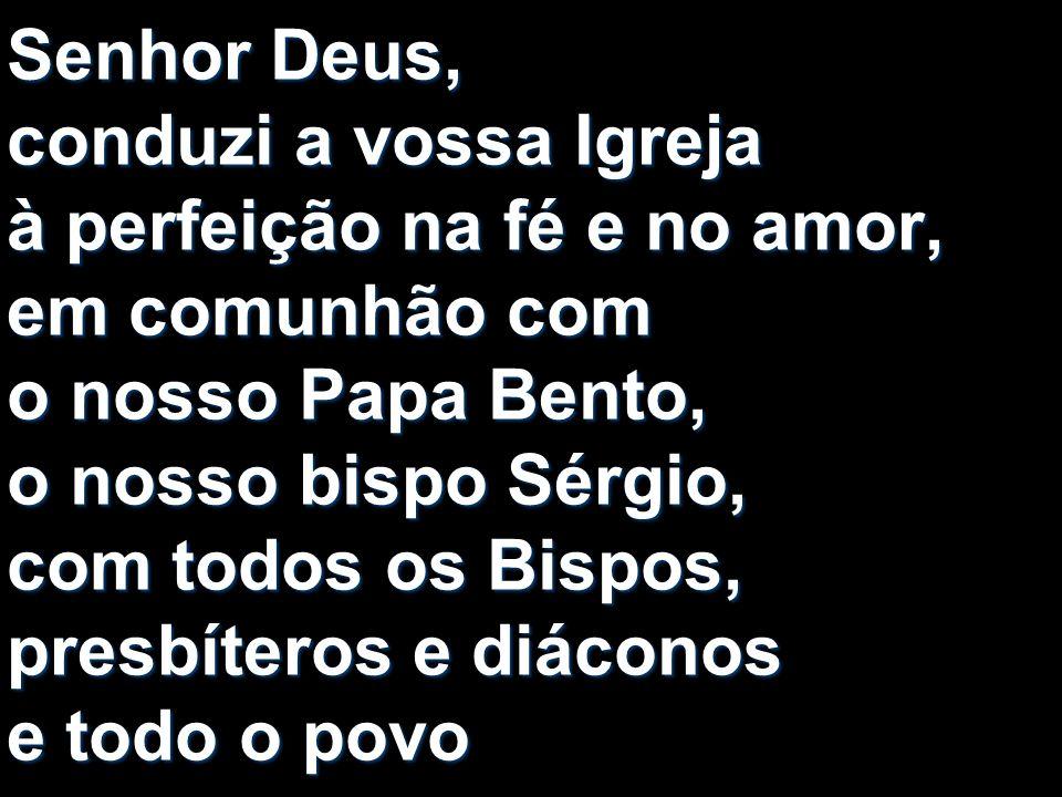 Senhor Deus, conduzi a vossa Igreja à perfeição na fé e no amor, em comunhão com o nosso Papa Bento, o nosso bispo Sérgio, com todos os Bispos, presbí