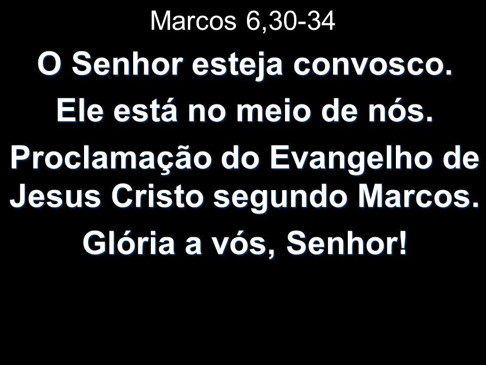 Marcos 6,30-34 O Senhor esteja convosco. Ele está no meio de nós. Proclamação do Evangelho de Jesus Cristo segundo Marcos. Glória a vós, Senhor!