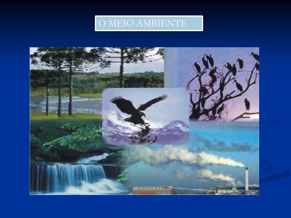 Para a próxima aula Pesquisar o conceito de ecologia Pesquisar o conceito de ecologia Pesquisar o conceito de Meio Ambiente